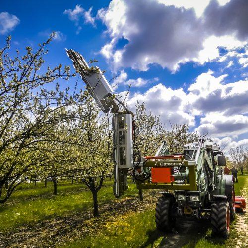 Pruning machine PNP (10)