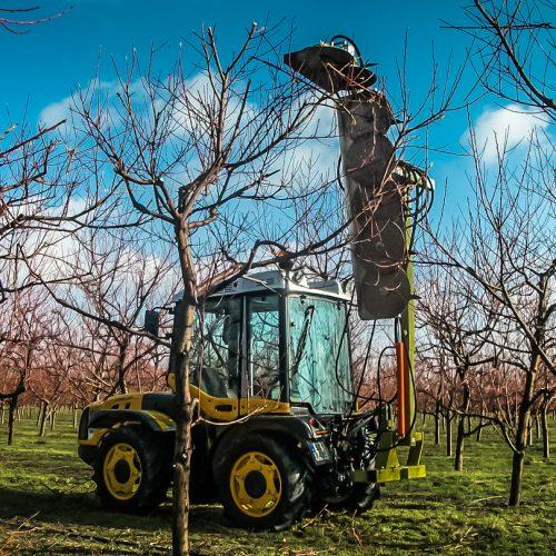 Pruning machine PNP (3)