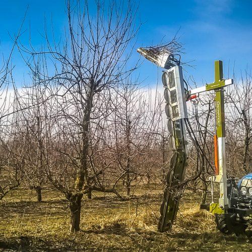 Pruning machine PNP (6)